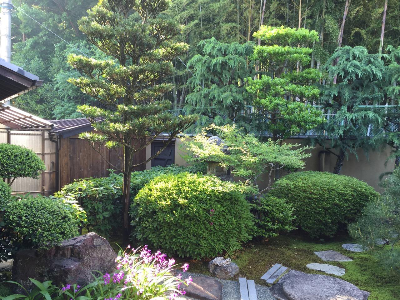 菊香荘の朝 - 庭2