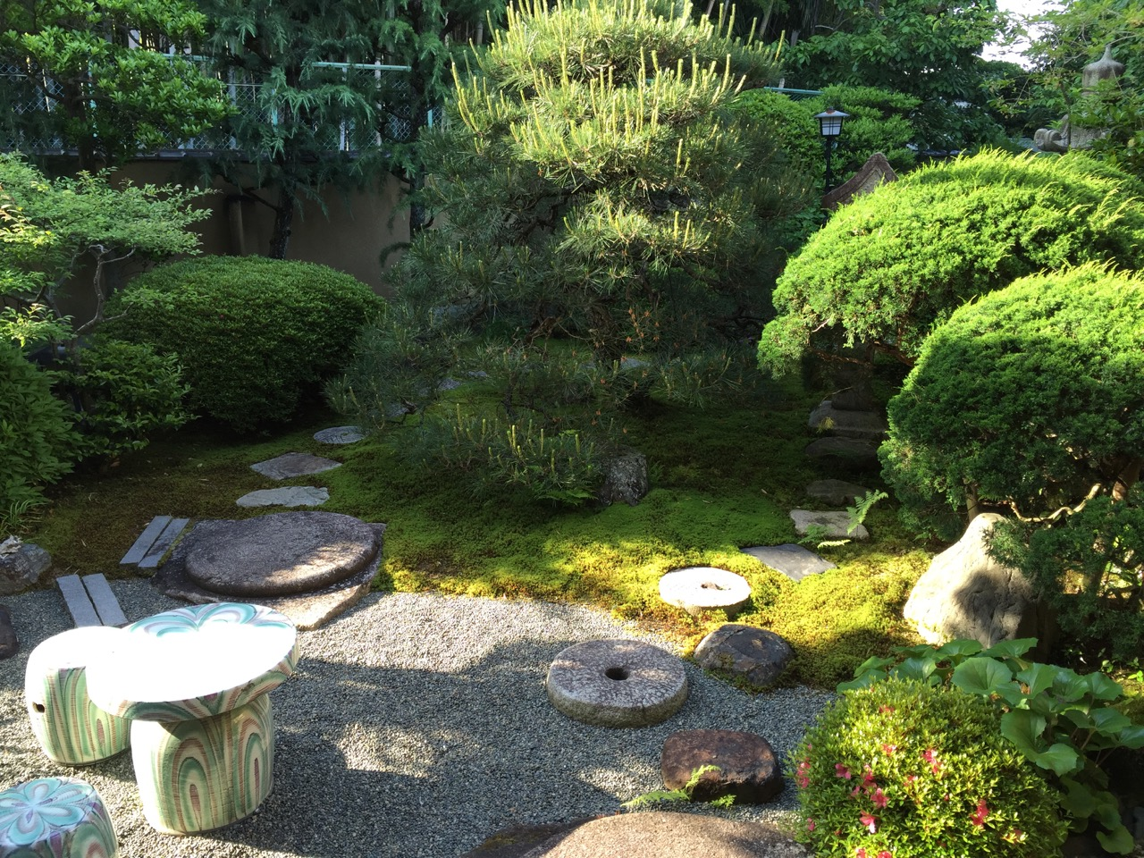 菊香荘の朝 - 庭1